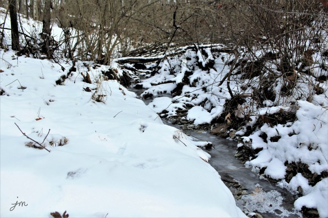 Frozen Stream - Backyard - Mars, PA  - January 2018
